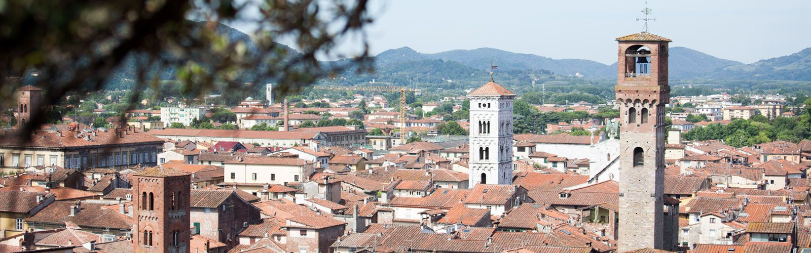 Lucca Top A