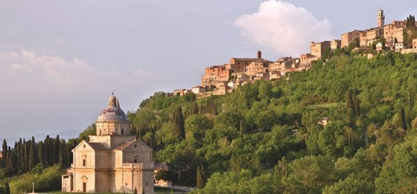 Montepulciano and Pienza Day Tour